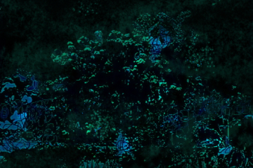 Gières,il giardino di notteu